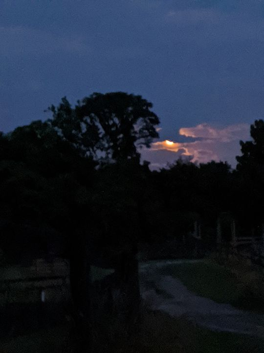 Amazing moon this 4th of July!