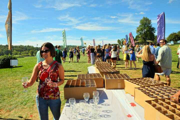45th Annual Virginia Wine Festival® - 2021 is Baack! Let's Drink Some Great VA Wine - October 2nd & 3rd, 2021 at One Lou...
