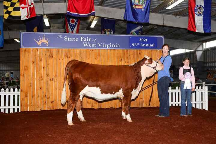 For us, cattle shows are as much about the time spent visiting with friends, customers and consumers as they are about t...